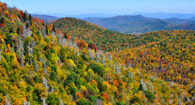 Blue Ridge Parkway Fall Sightseeing