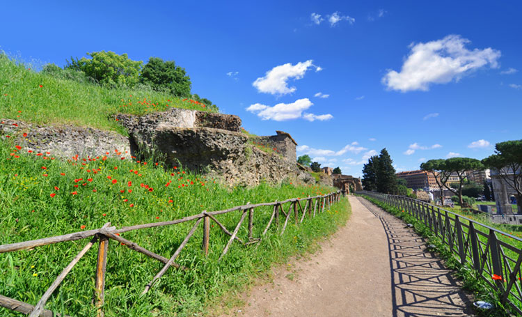 Peaceful walking path at the Palatine Hill.