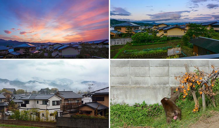 Some of the views I saw from my share house rental in Kyoto, Japan.